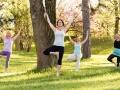 yoga-bauernberg-linz_Baeume