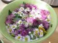 Ess-Blüten