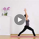 Vinyasa Yoga Video Karin Metzger
