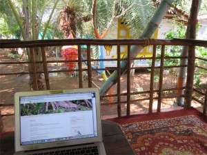 buddhas garden balcony